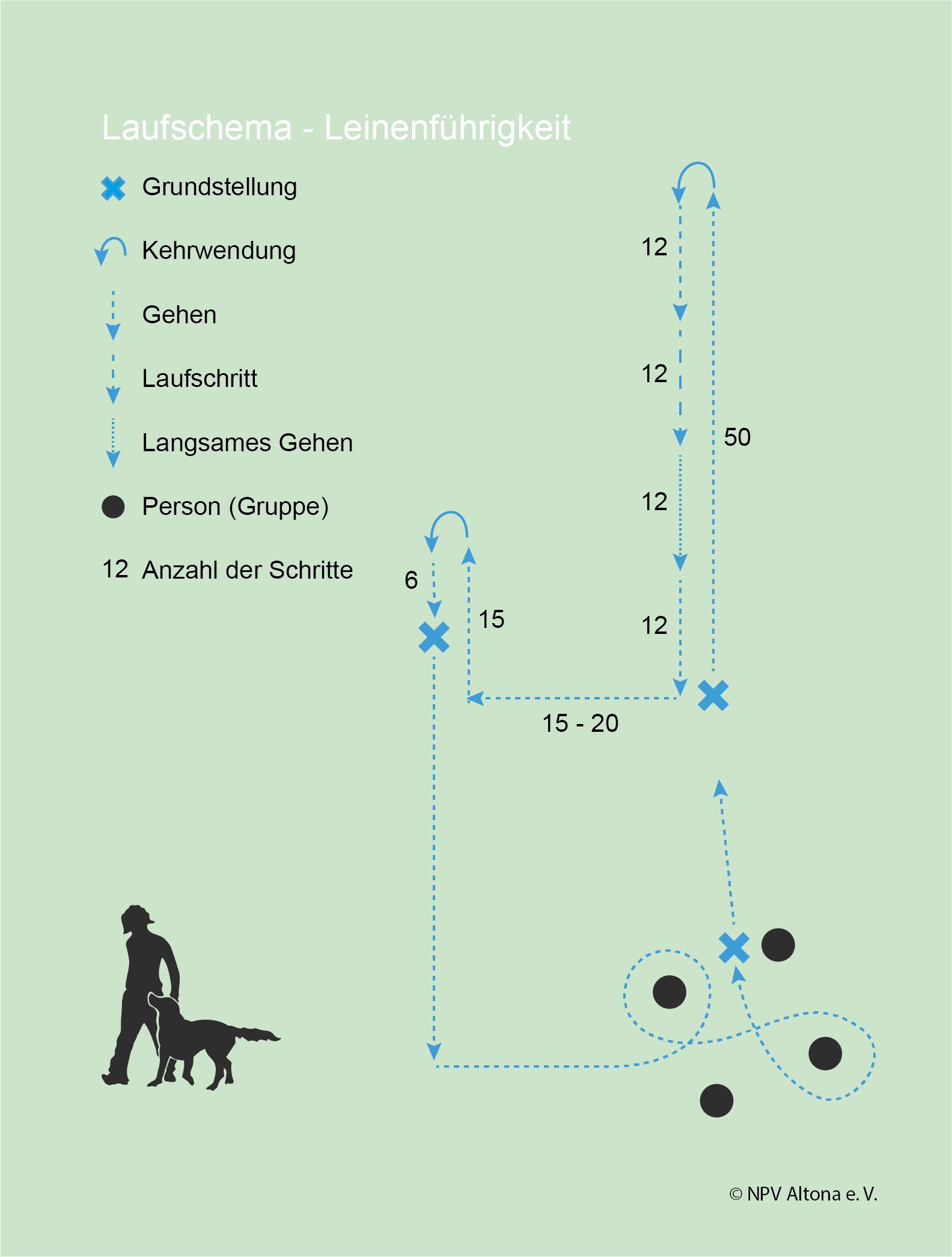 Laufschema-Leine